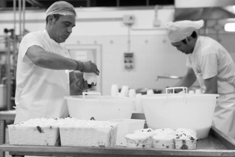 Lavorazione del formaggio fresco